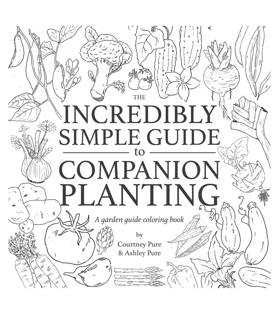 Image of The Incredibly Simple Guide to Companion Planting